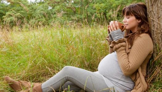 Čaje a bylinné zmesy v tehotenstve
