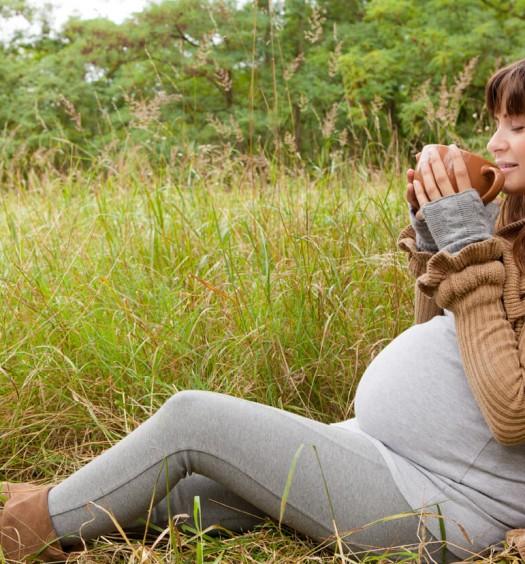 Bylinne caje v tehotenstve
