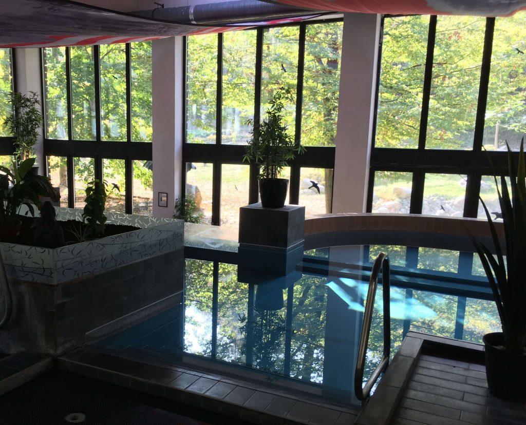 Hlavný bazén s vírívkami a luxusným výhľadom do prírody v hoteli Oxigén