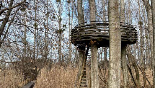 Rozhľadňa Hniezdo v Malinove